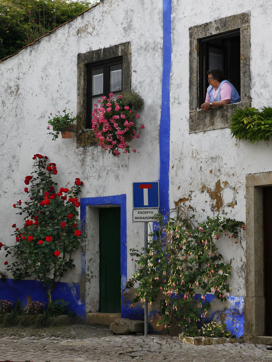 Flowering wall of Obidos, Portugal
