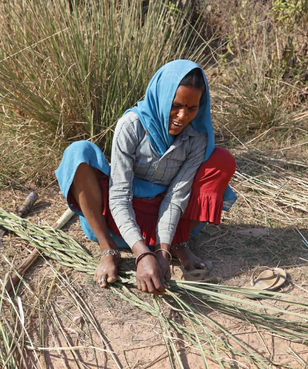 Indian Woman Braiding Reeds for Baskets, Bund Baretha, India