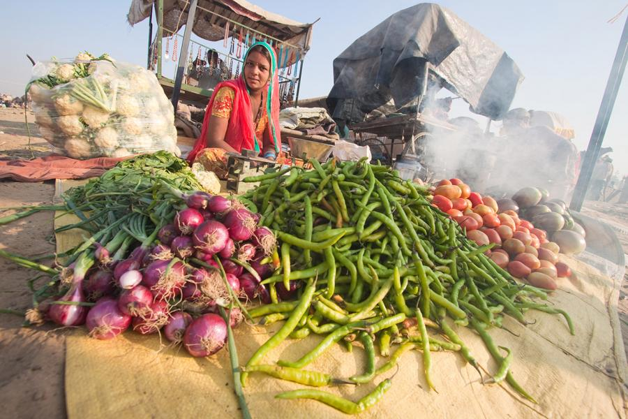 Vegetable Vendor at the Camel Fair, Pushkar, India