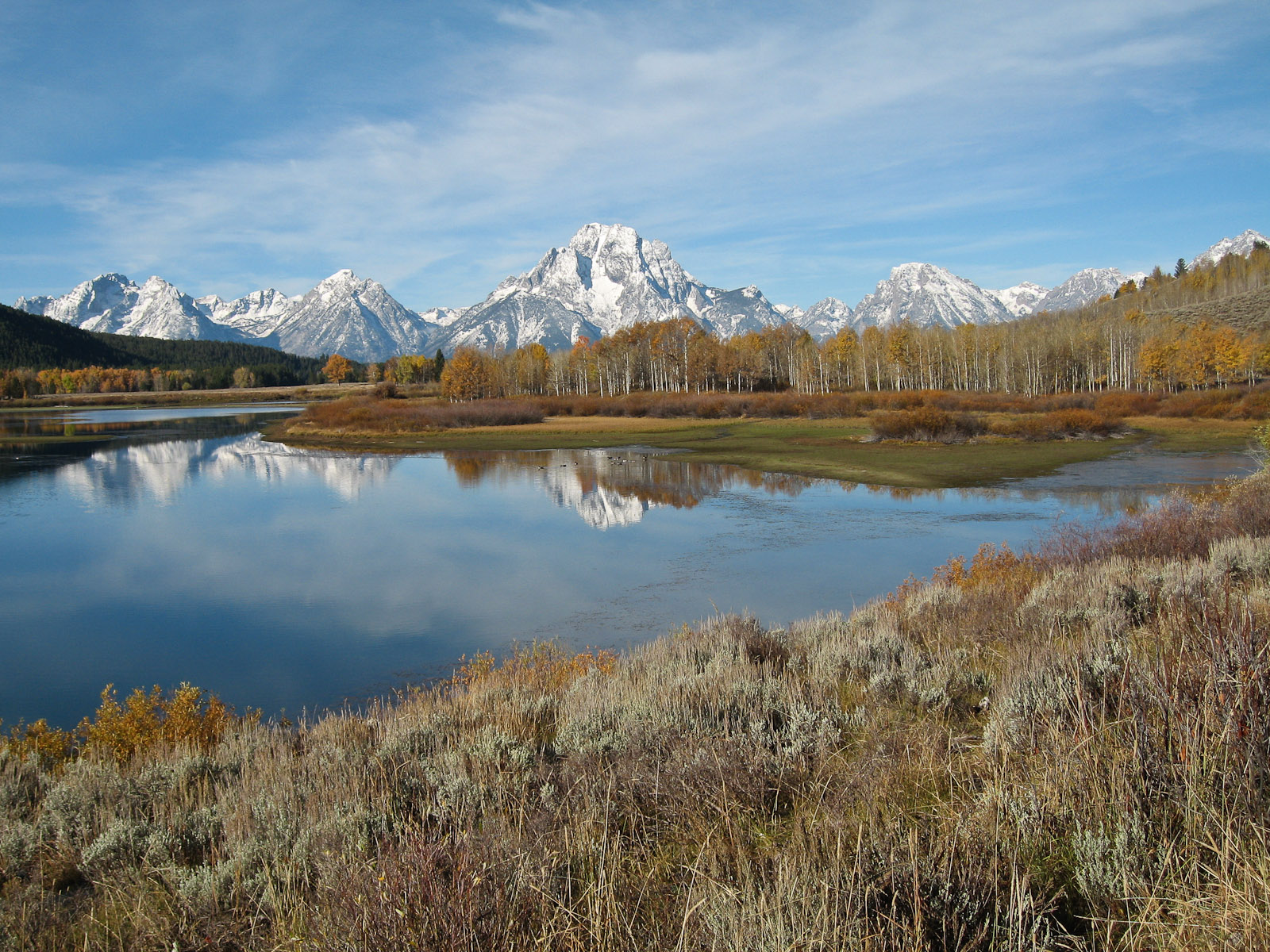 Oxbow Bend View of Mount Moran