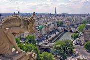 A Gargoyle view of Paris from Notre Dame
