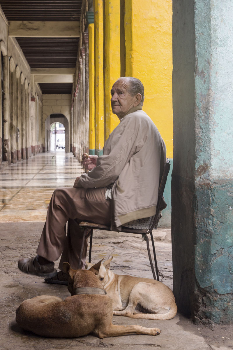Old Man and His Dogs, Havana, Cuba