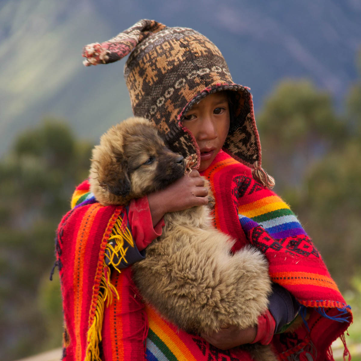 A Boy And His Dog Peru